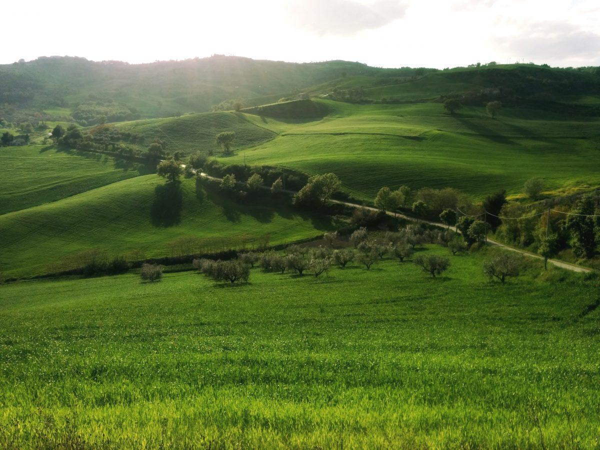 natura ed ecologia
