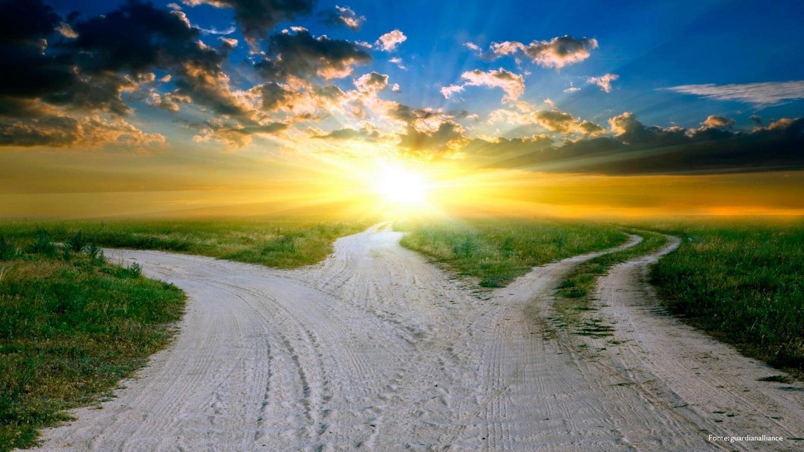 il percorso della vita